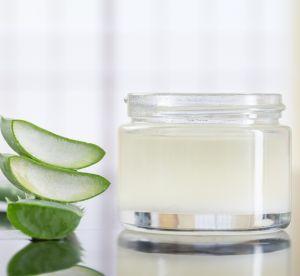 Aloe vera : 3 manières de l'utiliser comme un produit de beauté