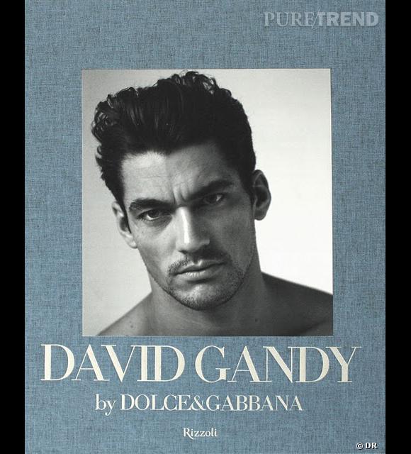 """""""David Gandy by Dolce & Gabbana"""", aux éditions Rizzoli       Égérie Dolce & Gabbana depuis 2006, David Gandy a eu l'occasion de passer devant l'objectif des plus grands photographes de mode, comme Mario Testino ou Steven Klein. Il n'en fallait pas plus pour que la maison d'édition rassemble tous ces clichés (dont certains sont vraiment très """"hot"""") dans un livre signé Peter Howarth (rédacteur mode au GQ anglais).       Sortie le 27 septembre 2011."""
