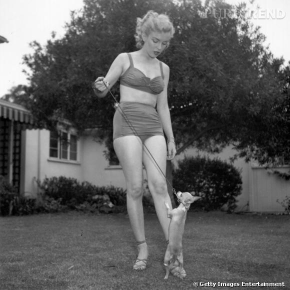Marilyn Monroe est l'une des premières actrices hollywoodiennes à poser en bikini. En 1948, elle se dénude pour la marque de maillots Jantzen aux côtés de la nageuse Esther Williams et du mannequin Betty Page.