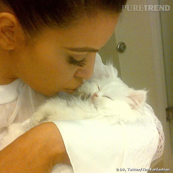 Kim Kardashian vient de perdre son petit chat Mercy.