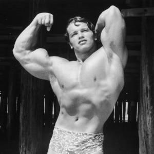 Arnold Schwarzenegger, la montagne de muscles.