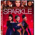 """Le DVD  : """"Sparkle"""".     Pourquoi lui ?  Le dernier film avec Whitney Houston, parfait pour lui rendre un ultime hommage. Mais aussi pour les passionnés de musique qui pourront découvrir une bande-son très réussie... et qui se retrouveront entre un drame et une comédie romantique. A voir donc.     Le prix :  19.99 €."""