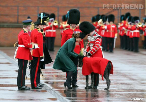 "Kate Middleton enceinte, visiblement une ""Dog Friendly""."