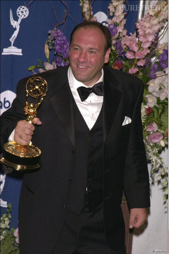 L'acteur a remporté un Emmy Awards en 2000 pour son rôle de mafieux dépréssif.