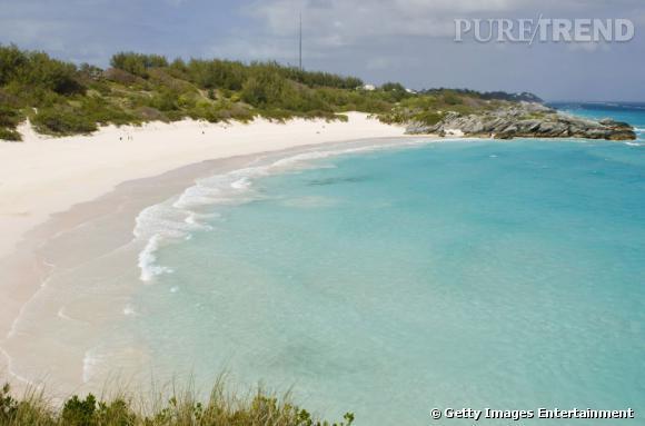 10 top des plus belles plages du monde en 2013 : Plage Horseshoebay Beach aux Bermudes.