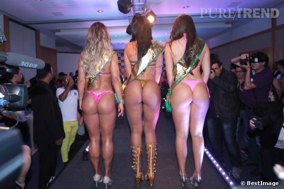 Le Brésil a élu Miss Bumbum 2013 et ses dauphines le 14 novembre 2013.