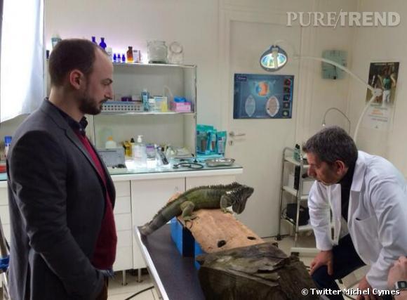 Michel Cymes joura bientôt un vétérinaire dans Doc Véto.