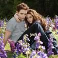 """Kristen Stewart et Robert Pattinson dans """"Twilight -Chapotre 5 : Révélation 2ème partie"""" en 2012."""