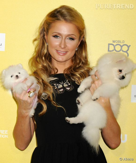 Paris Hilton et ses toutous, must have sur le tapis rouge.