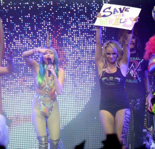 Pamela Anderson ose la tenue provocante sur scène.