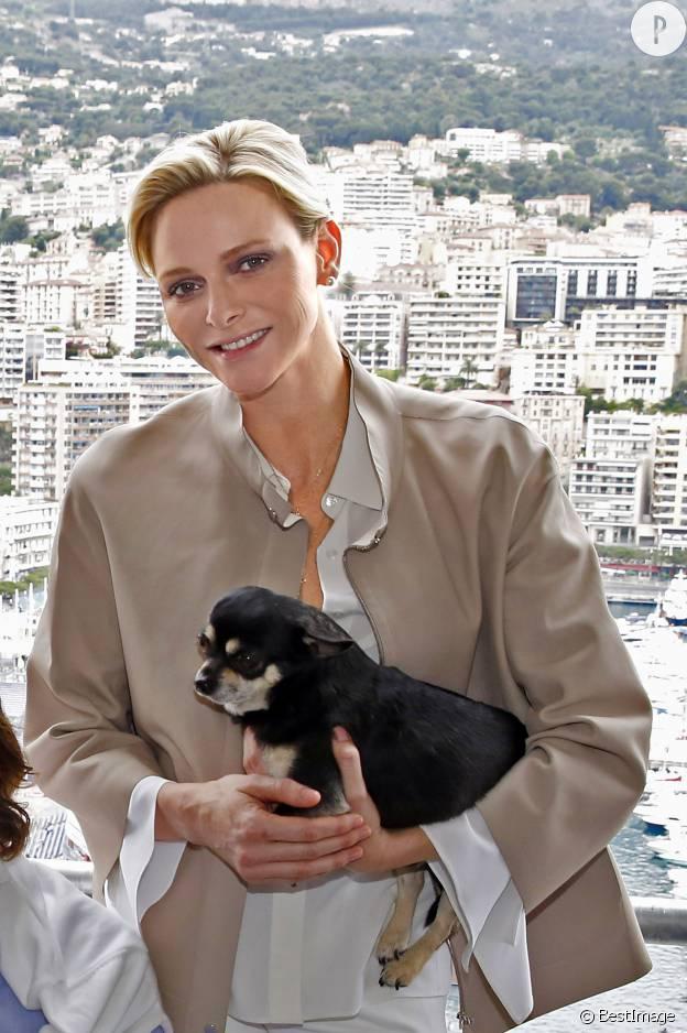Charlène de Monaco, retour sur son année 2015 en images.