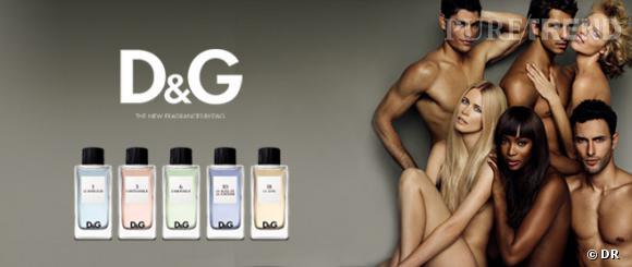 La campagne pour la nouvelle fragrance Dolce & Gabanna.