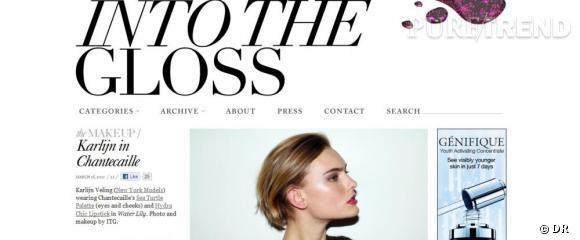 Nom  :  intothegloss.com     Ce qu'on aime  : la qualité des photos et le sérieux d'Emily Weiss, la blogueuse, qui s'inspire des créateurs, des make-up artists et qui les rencontrent pour plus de crédibilité.   Le moins  : ressemble davantage à un site spécialisé qu'un blog à la première personne.