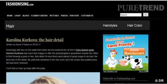 """Nom  :  http://www.fashionising.com/hair/     Ce qu'on aime  : """"la rubrique cheveux"""" du blog, spécialisée sur les mannequins en street style et les podiums.    Le moins  : le manque d'articles récents."""