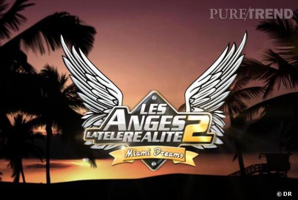 """""""Les Anges de la télé-réalité"""", saison 2, en ce moment sur NRJ12."""
