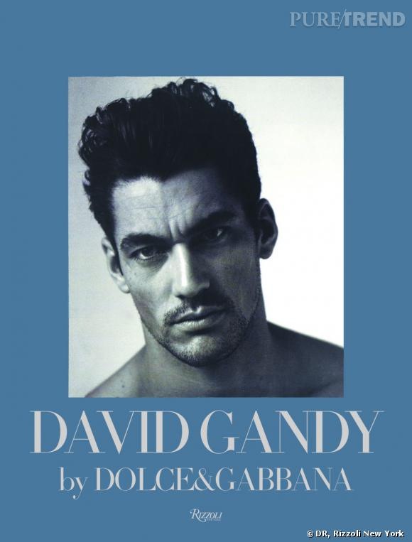 DAVID GANDY : By Dolce&Gabbana, Rizzoli New York, 2011.