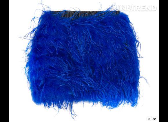 Zoom sur les plumes !     Jupe Zara, 99,95 €.