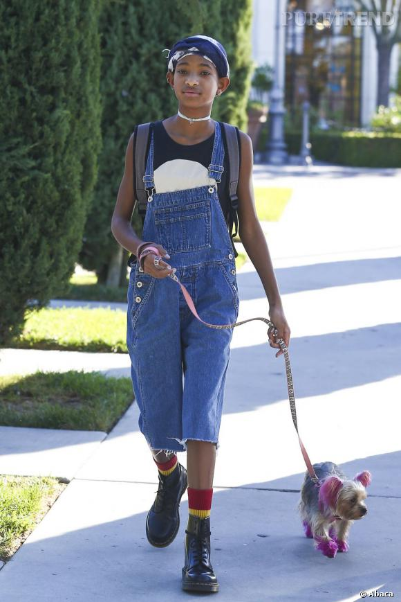 Willow Smith promène son chien dans les rues de Los Angeles.