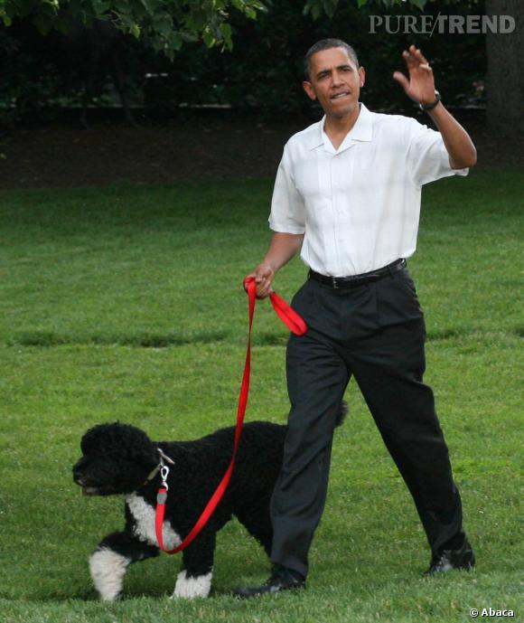 Son chien Bo : En montrant qu'il est un ami des bêtes, le président gagne le coeur de ses électeurs. Et si maintenant il adoptait un chat ?