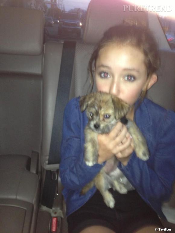 Miley Cyrus a elle aussi adopté un petit chiot... Un chiot dont sa petite soeur s'occupe avec plaisir.