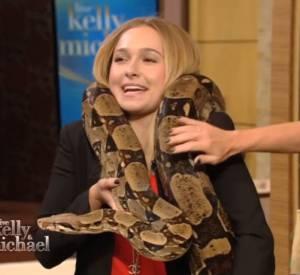 En arrivant avec un énorme serpent sur le plateau, Hayden Panettiere a effrayé Michael Strahan...