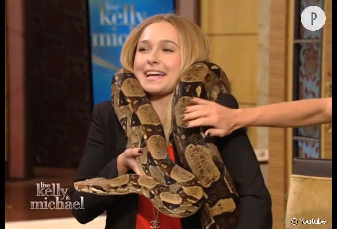 Serpents sur un plateau porno