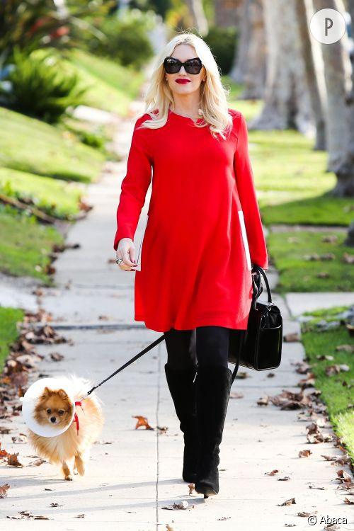 Gwen Stefani promène son petit chien avec style.