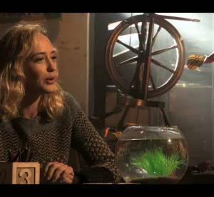 La parenthèse inattendue : Hélène de Fougerolles en 5 infos vérité