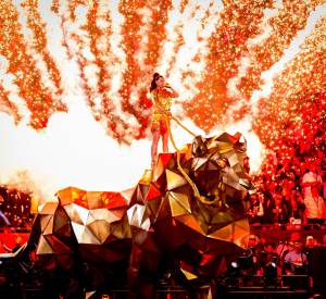 Katy Perry au Super Bowl 2015.