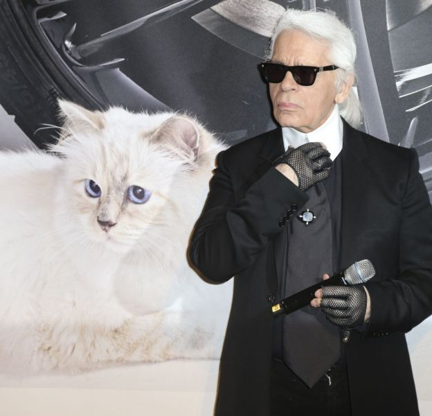 Karl Lagerfeld est prêt à tout pour sa chatte Choupette.