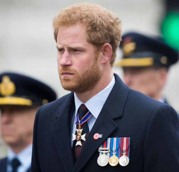 Le prince Harry réussit à nous séduire malgré son air strict.