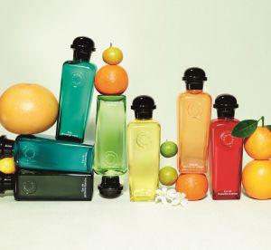 Parfum : le renouveau des eaux de Cologne