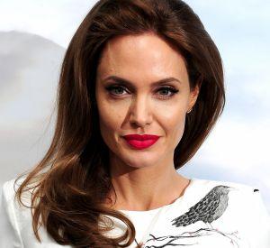 Angelina Jolie et Brad Pitt se battent encore pour la garde de leurs six enfants.