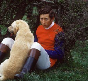 4 pièces mode qu'on peut piquer... au prince Charles !