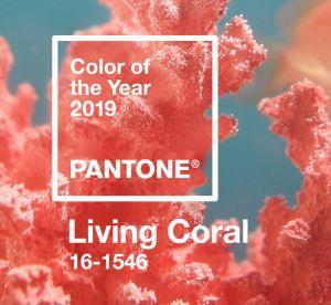 Va-t-on porter la couleur de l'année 2019 par Pantone ?