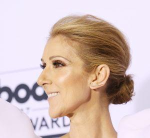 Pourquoi on veut absolument cette trousse Misencil x Céline Dion