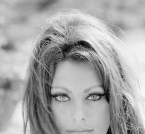 Je veux le même beauty look que Sophia Loren