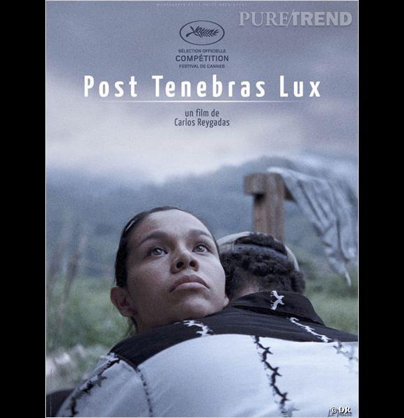 """Post Tenebras Lux  .     Le Synopsis :  Au Mexique Juan et sa jeune famille ont quitté la ville pour s'installer à la campagne. Là ils profitent et souffrent d'un monde qui voit la vie différemment. Juan se demande si ces mondes sont complémentaires, ou bien s'ils s'affrontent inconsciemment pour s'éliminer entre eux.     Les acteurs :  inconnu.     Le réalisateur :  Carlos Reygadas qui a aussi réalisé """"Lumière silencieuse"""".     Sortie :  Prochainement."""