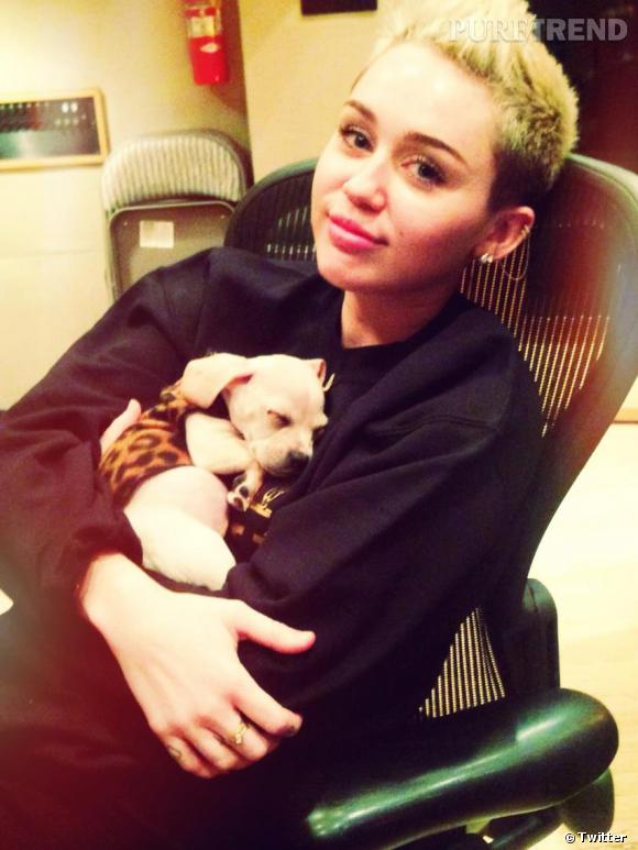 Miley Cyrus ne se lasse pas de photographier son nouveau venu, le petit Bean.