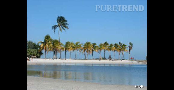 Se marier sur une plage de Miami.