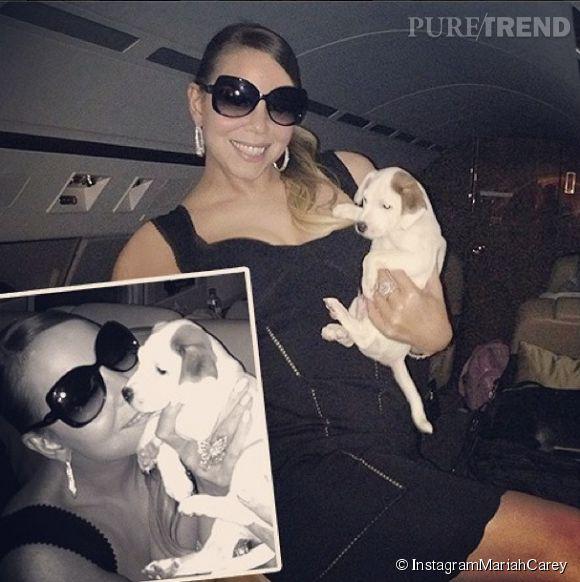 Mariah Carey dépense 28 000 dollars pour prendre soin de ses huits adorables toutous.