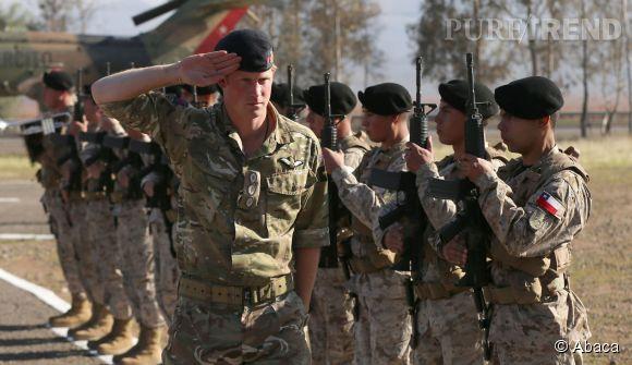 Le Prince Harry bénéficie aussi d'un salaire pour son rôle dans l'armée.