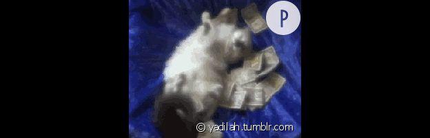 yadilah.tumblr.com