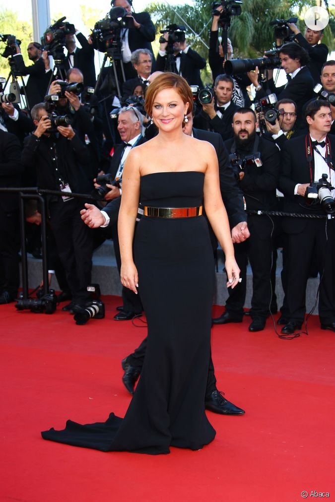 amy poehler abrorait une robe stella mccartney. Black Bedroom Furniture Sets. Home Design Ideas