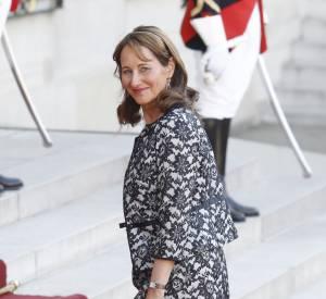 Devenue Minsitre de l'écologie, Ségolène Royal gravit toujours plus les marches du pouvoir.