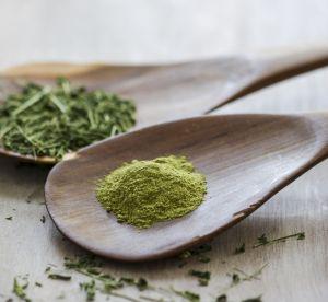 Qu'est-ce que le Moringa, le nouvel super aliment qui buzze ?