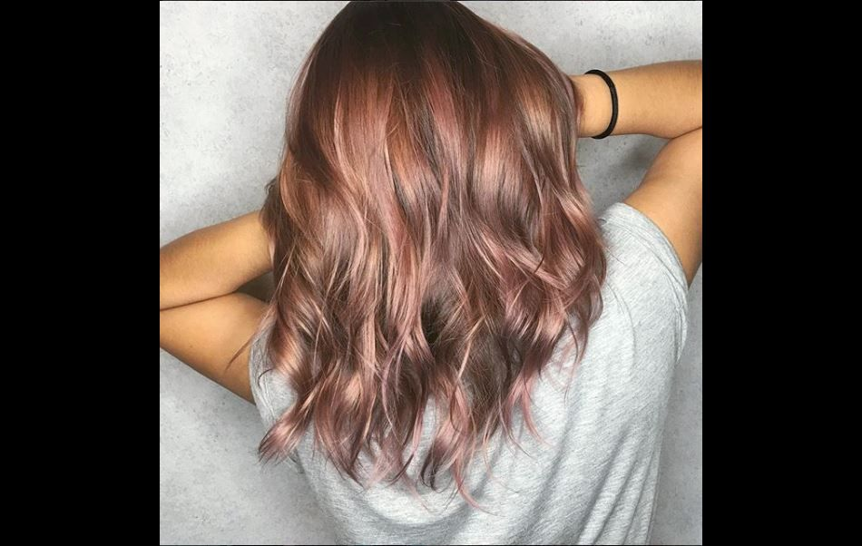 Le Rose Brown Hair La Coloration Qui Va Surpasser Le Rose Gold