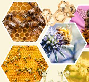 L'abeille précieuse, la tendance bijou la plus poétique du moment