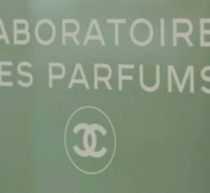 Le Chanel n°19 par Jacques Polge...
