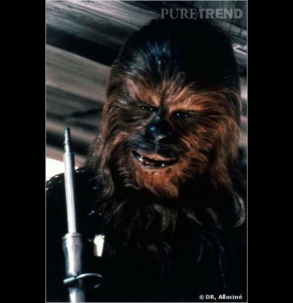 """Chewbacca est la dernière guest-star que les fans ont pu découvrir sur leur écran. Le personnage mythique de """"Star Wars"""" fait une apparition dans l'épisode de la saison 3 spécial Noël."""